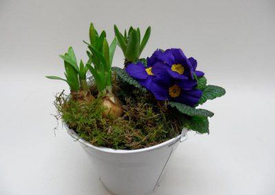 Bepflanzte Schale b