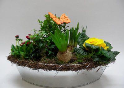 Bepflanzte Schale d